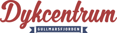 dykcentrum-logo