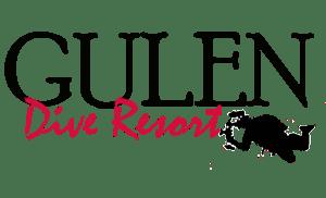 Gulen 2019